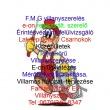 F.M.G. Villanyszerelés