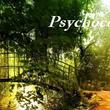 Psychocomfort
