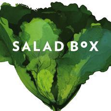 Salad Box - Campona