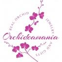 Orchideamania ékszer,divatárú,dekoráció, ajándék