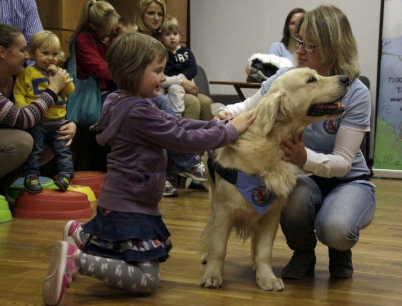 A gyerekek imádják az állatokat