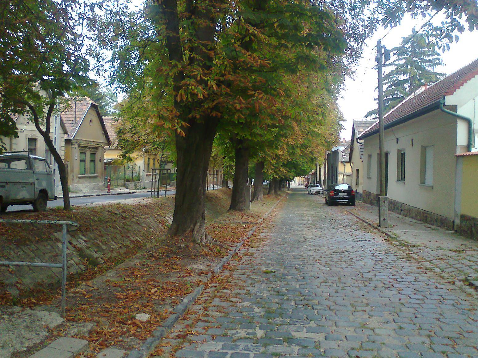 (fotó:budafokteteny.hu)